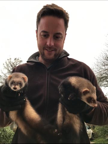 Martin and Ferrets - Landguard Pest Control